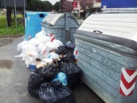 rifiuti-abbandonati-cassonetti