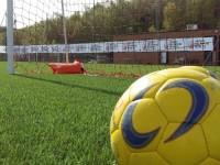 pallone calcio rete generica