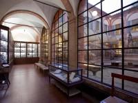 museo accademia fisiocritici