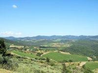 Gaiole paesaggio sentiero Oxfam7