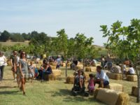 rural-festival-in-emilia-2