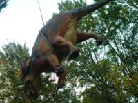 dinosauri-styracosaurus_foto-s-maganuco