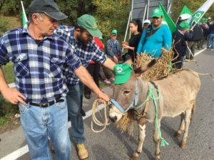 manifestazione-agricoltori-grano-2016