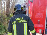 vigili-del-fuoco-ricerche-bosco-2