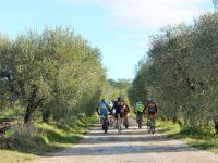 vinsanto-bike-tour