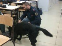 polizia-controlli-antidroga-scuole