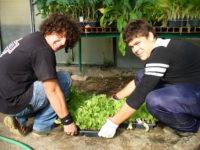 scuola-istituto-agrario