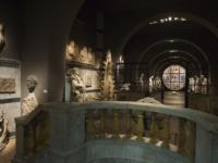 Museo Opera sala statue