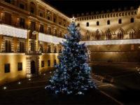 albero-natale-piazzasalimbeni