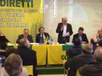 INTERVENTO REMASCHI