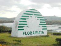 floramiata