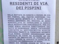 volantino Pispini
