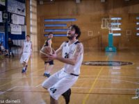 cus basket springtails 2