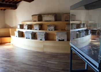 Asciano, museo di palazzo corboli,