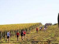 Ecomaratona Chianti - edizioni precedenti3