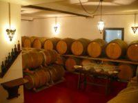 Al Ciliegio la festa del vino novo e dell\'olio novo – Antenna Radio Esse