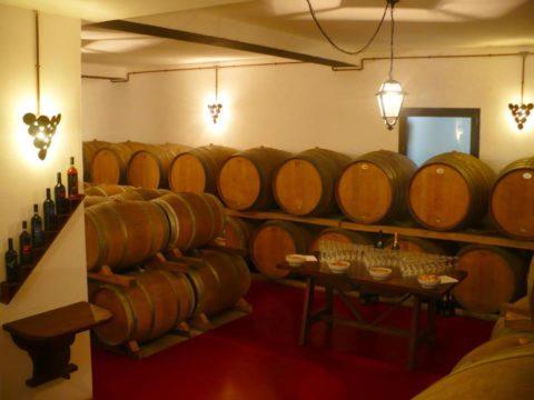 Al Ciliegio la festa del vino novo e dell\'olio novo ...