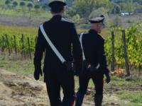carabinieri ricerca in campagna