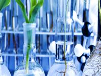 UniSi Dipartomento Biotecnologie mediche