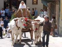 Matrimonio contadino