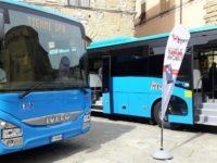 autobus tiemme