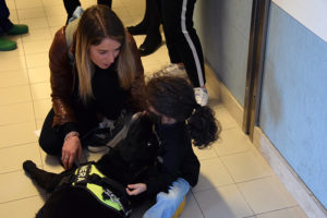 pet therapy4