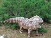 Jurassic Orto