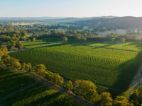De-Bortoli-King-Valley-Aerial-Sunset