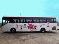 Bus Siena-Fiumicino_800x591