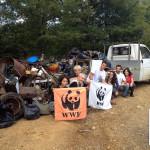 attivisti wwf pulizia bosco