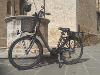 bici elettriche san quirico 2