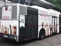 bus Siena 2019_800x450