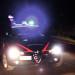 Lavoratori in nero in un cantiere forestale e in un night, i carabinieri sospendono l'attività