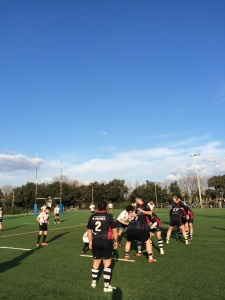 rugby cus-livorno